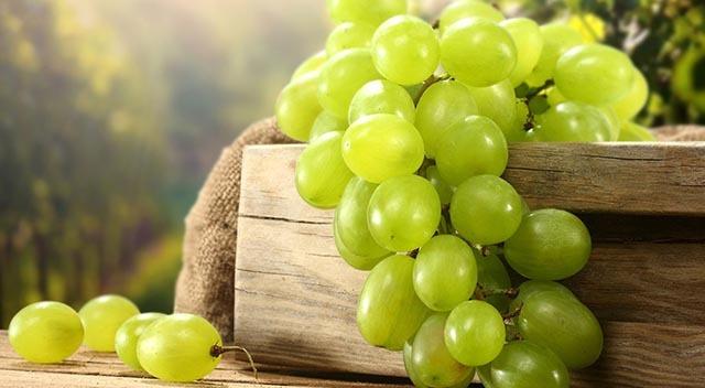 تاثیر انگور بر کاهش اشتها و لاغری