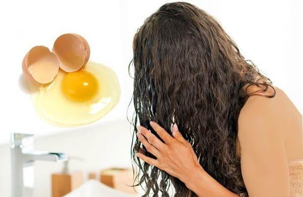 درمان موی چرب با تخم مرغ